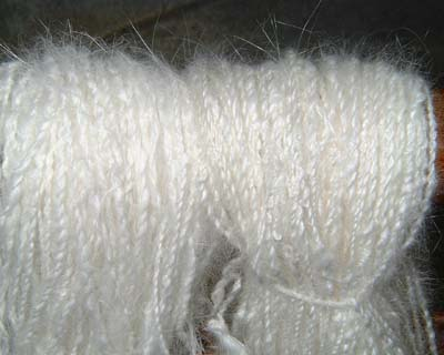 carry two satin genes to grow shiny satin angora wool